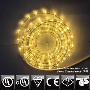 24V DC LED rope light