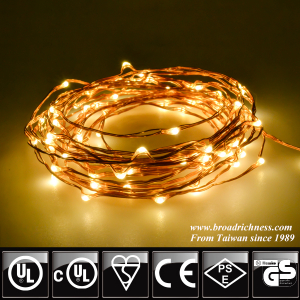 100CT LED Copper Wire String Lights