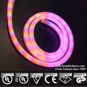 DIP RGB Color Changing LED Neon Rope Light