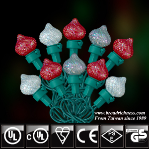 25CT/35CT/50CT G25 Glass Strawberry Pearl Paint Multi-color LED Christmas String Lights